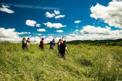 Suche im hohen Gras