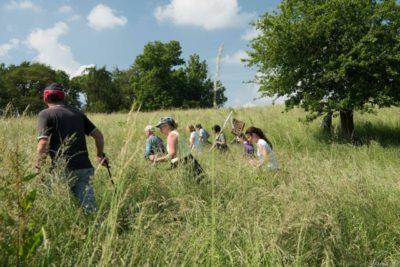 Die konzentrierte Suche im oft mannhohen Gras ist meist sehr anstrengend